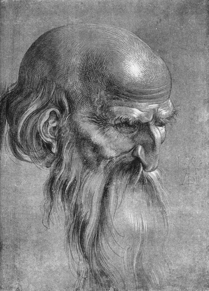 Head of Apostle Looking Downward: Albrecht Durer