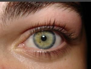 reference photo eye
